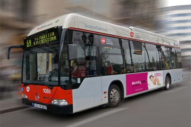 dormity campaña bus 2