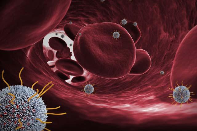 Sagetis Biotech 4