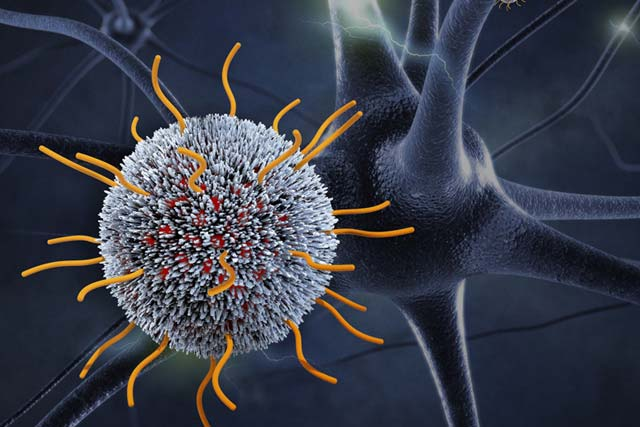 Sagetis Biotech 5